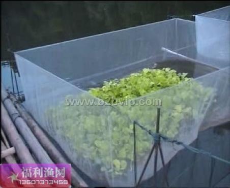 黄鳝泥鳅养殖网箱