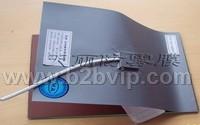 上海天麗衛浴鏡PVC高級節能電子防霧膜