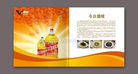商务网站 片头动画设计 ■ 广告设计: 杂志广告设计 招贴海报设计